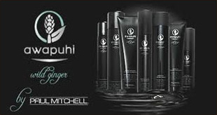 awapuhi wild ginger products available, Paul Mitchell products available